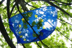 EU flag niccolo caranti